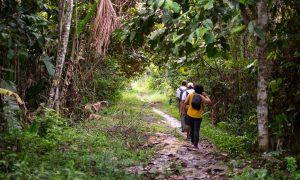 Caminantes en la Amazonía colombiana